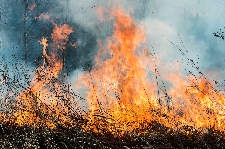 Carr Fire Redding