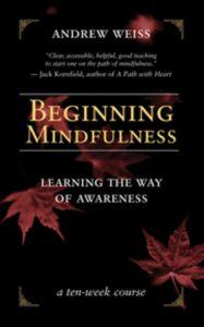 beginning-mindfulness-187x300